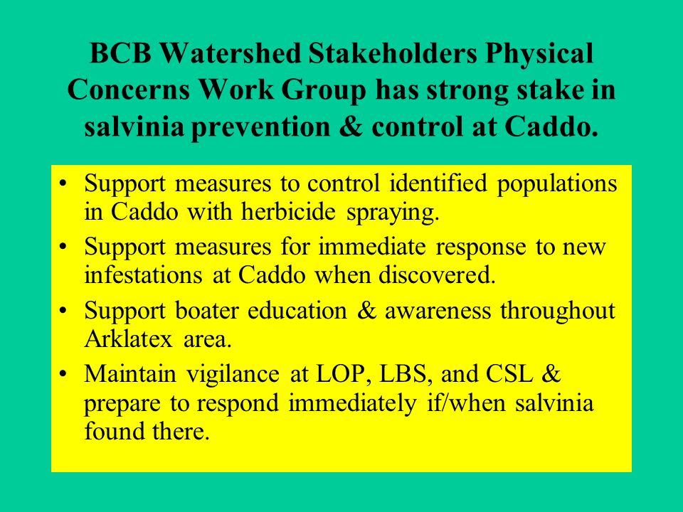 BCB Watershed Stakeholders Physical Concerns Work Group has strong stake in salvinia prevention & control at Caddo.