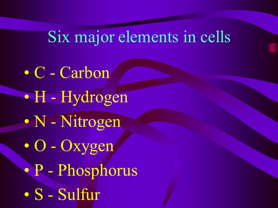 hetero, chemo and phototrophs use energy from the environment light and heat energy from the sun energy stored in chemical bonds or organic or inorganic compounds