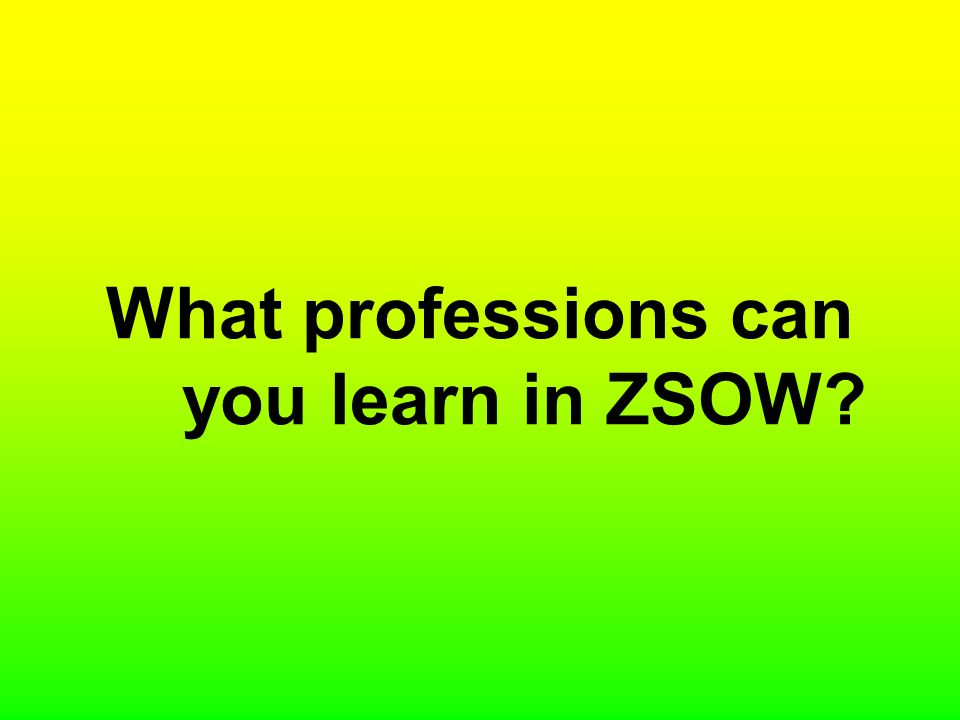 What professions can you learn in ZSOW