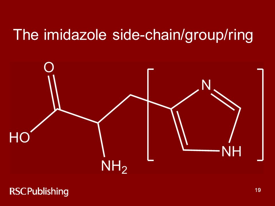 19 The imidazole side-chain/group/ring