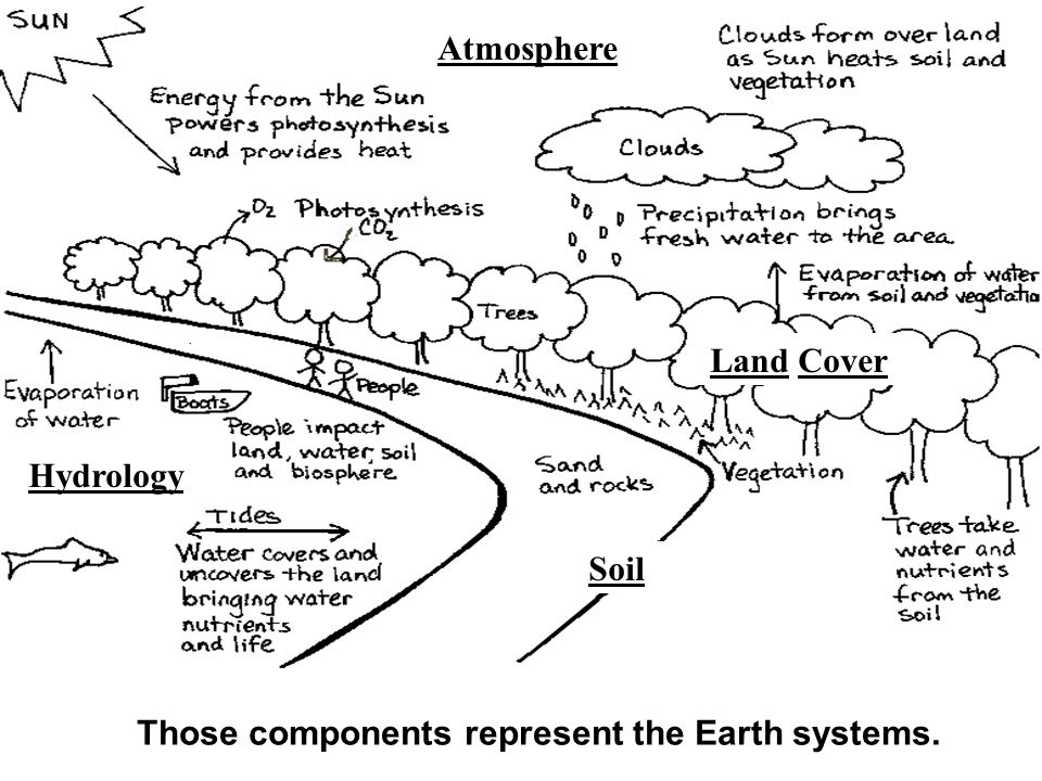 Those components represent the Earth systems. Hydrology Atmosphere Land Cover Soil