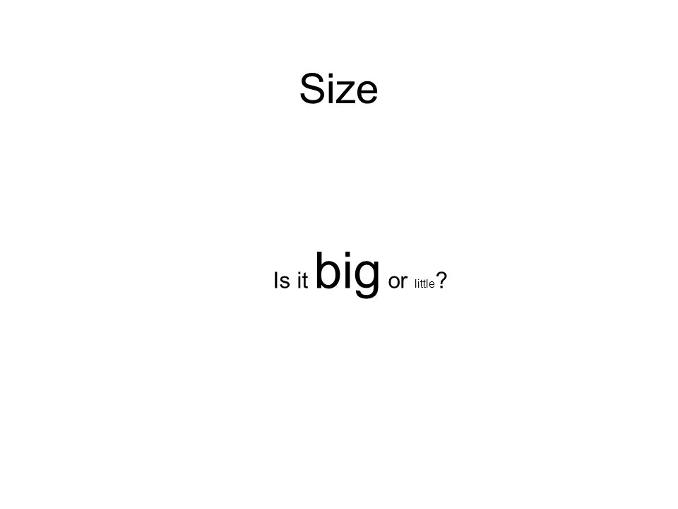 Size Is it big or little