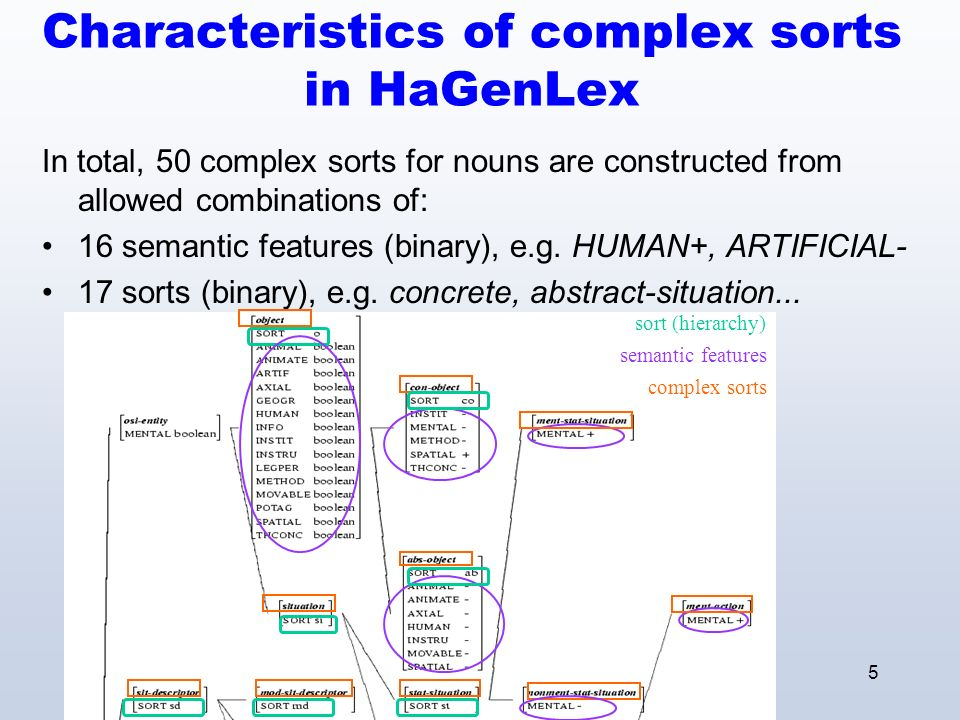 5 Characteristics of complex sorts in HaGenLex In total, 50 complex sorts for nouns are constructed from allowed combinations of: 16 semantic features (binary), e.g.