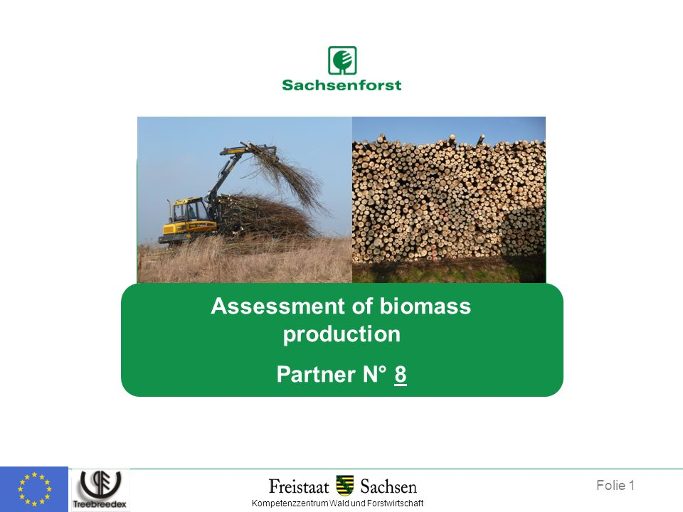 Assessment of biomass production Partner N° 8 Kompetenzzentrum Wald und Forstwirtschaft Folie 1