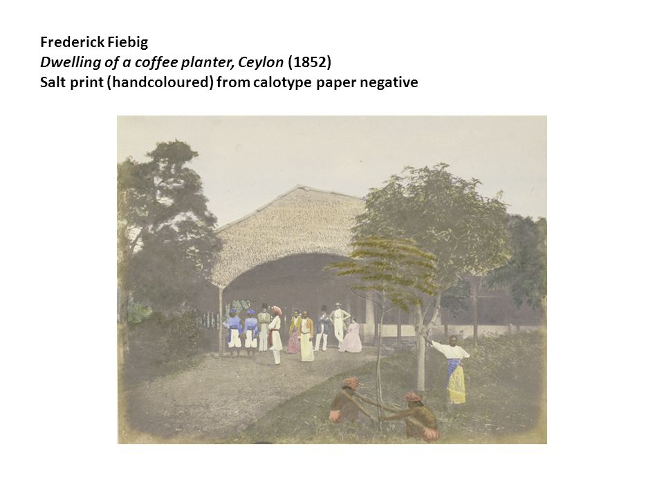 Frederick Fiebig Dwelling of a coffee planter, Ceylon (1852) Salt print (handcoloured) from calotype paper negative