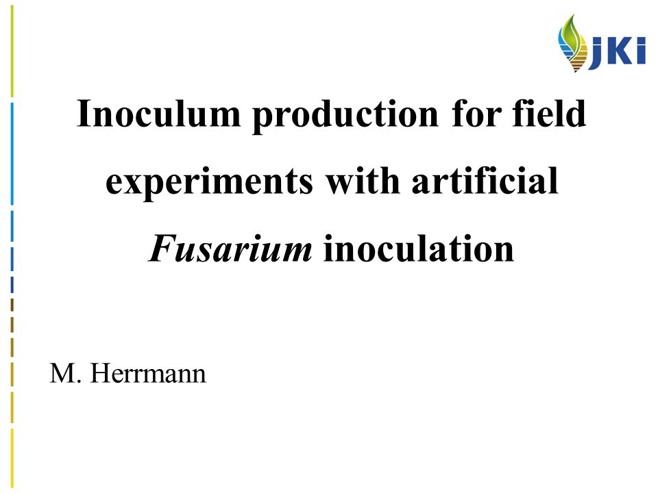 Inoculum production for field experiments with artificial Fusarium inoculation M. Herrmann
