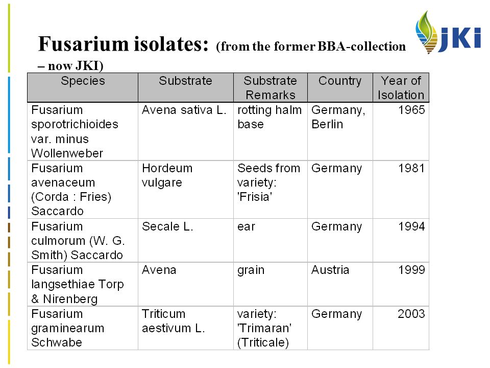 Fusarium isolates: (from the former BBA-collection – now JKI)
