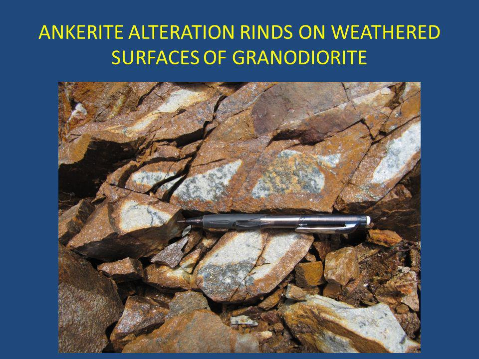 ANKERITE ALTERATION RINDS ON WEATHERED SURFACES OF GRANODIORITE