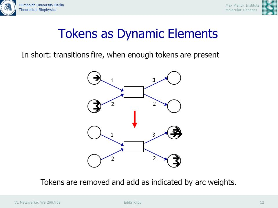 VL Netzwerke, WS 2007/08 Edda Klipp 12 Max Planck Institute Molecular Genetics Humboldt University Berlin Theoretical Biophysics Tokens as Dynamic Elements In short: transitions fire, when enough tokens are present Tokens are removed and add as indicated by arc weights.