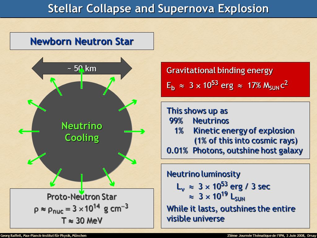 Georg Raffelt, Max-Planck-Institut für Physik, München25ème Journée Thématique de lIPN, 3 Juin 2008, Orsay Newborn Neutron Star ~ 50 km Proto-Neutron Star nuc 3 10 14 g cm 3 nuc 3 10 14 g cm 3 T 30 MeV NeutrinoCooling Gravitational binding energy Gravitational binding energy E b 3 10 53 erg 17% M SUN c 2 E b 3 10 53 erg 17% M SUN c 2 This shows up as This shows up as 99% Neutrinos 99% Neutrinos 1% Kinetic energy of explosion 1% Kinetic energy of explosion (1% of this into cosmic rays) (1% of this into cosmic rays) 0.01% Photons, outshine host galaxy 0.01% Photons, outshine host galaxy Neutrino luminosity Neutrino luminosity L 3 10 53 erg / 3 sec L 3 10 53 erg / 3 sec 3 10 19 L SUN 3 10 19 L SUN While it lasts, outshines the entire While it lasts, outshines the entire visible universe visible universe Stellar Collapse and Supernova Explosion