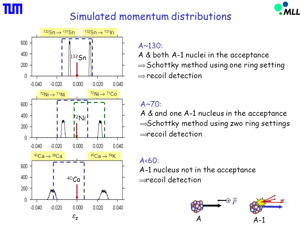 Simulated momentum distributions 40 Ca 40 Ca 39 K 40 Ca 39 Ca 72 Ni 71 Co 72 Ni 71 Ni 132 Sn 132 Sn 131 In 132 Sn 131 Sn 72 Ni A~130: A & both A-1 nuclei in the acceptance Schottky method using one ring setting recoil detection A~70: A & and one A-1 nucleus in the acceptance Schottky method using zwo ring settings recoil detection A<60: A-1 nucleus not in the acceptance recoil detection A A-1 z