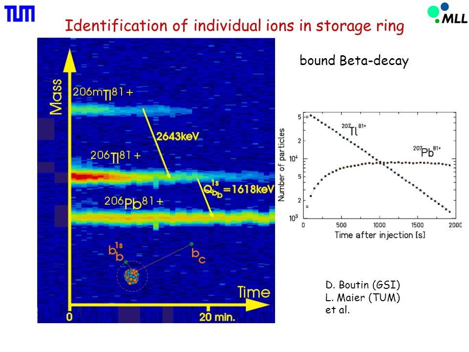 Identification of individual ions in storage ring D.