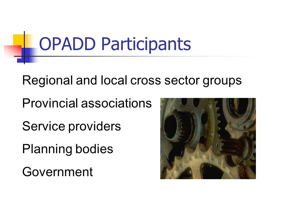 OPADD Participants Regional and local cross sector groups Provincial associations Service providers Planning bodies Government