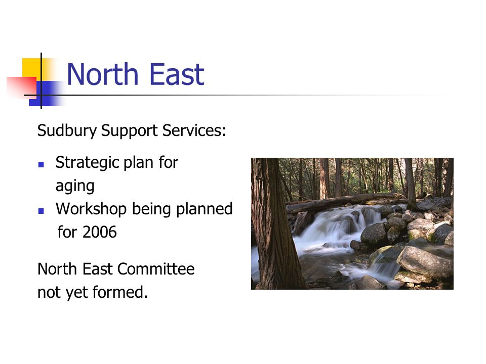 North East Sudbury Support Services: Strategic plan for aging Workshop being planned for 2006 North East Committee not yet formed.