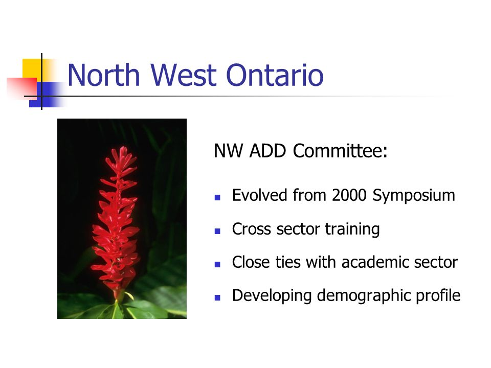 North West Ontario NW ADD Committee: Evolved from 2000 Symposium Cross sector training Close ties with academic sector Developing demographic profile