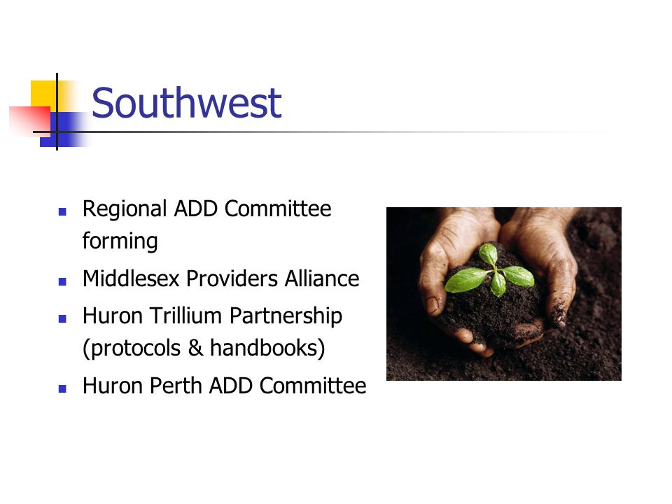 Southwest Regional ADD Committee forming Middlesex Providers Alliance Huron Trillium Partnership (protocols & handbooks) Huron Perth ADD Committee