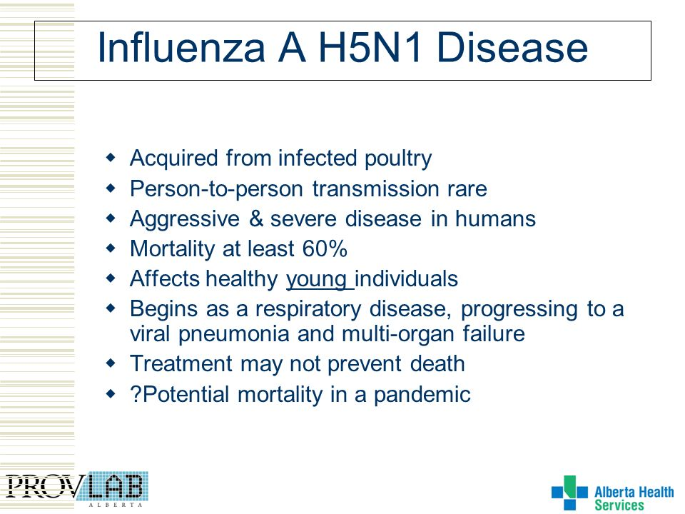 Influenza A H5N1 Disease Acquired from infected poultry Person-to-person transmission rare Aggressive & severe disease in humans Mortality at least 60% Affects healthy young individuals Begins as a respiratory disease, progressing to a viral pneumonia and multi-organ failure Treatment may not prevent death Potential mortality in a pandemic