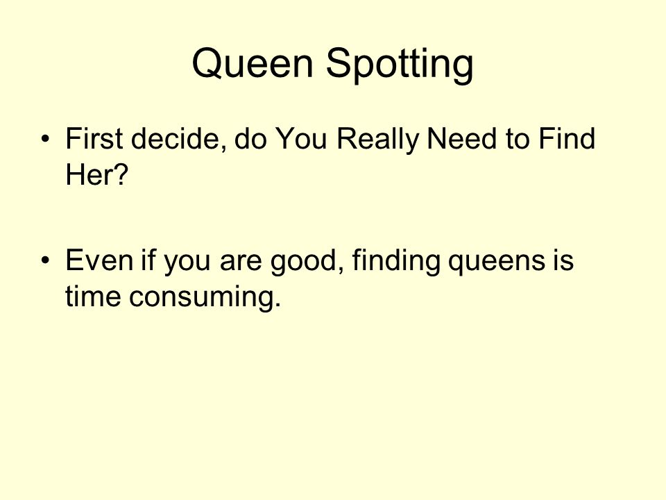 Queen Spotting First decide, do You Really Need to Find Her.