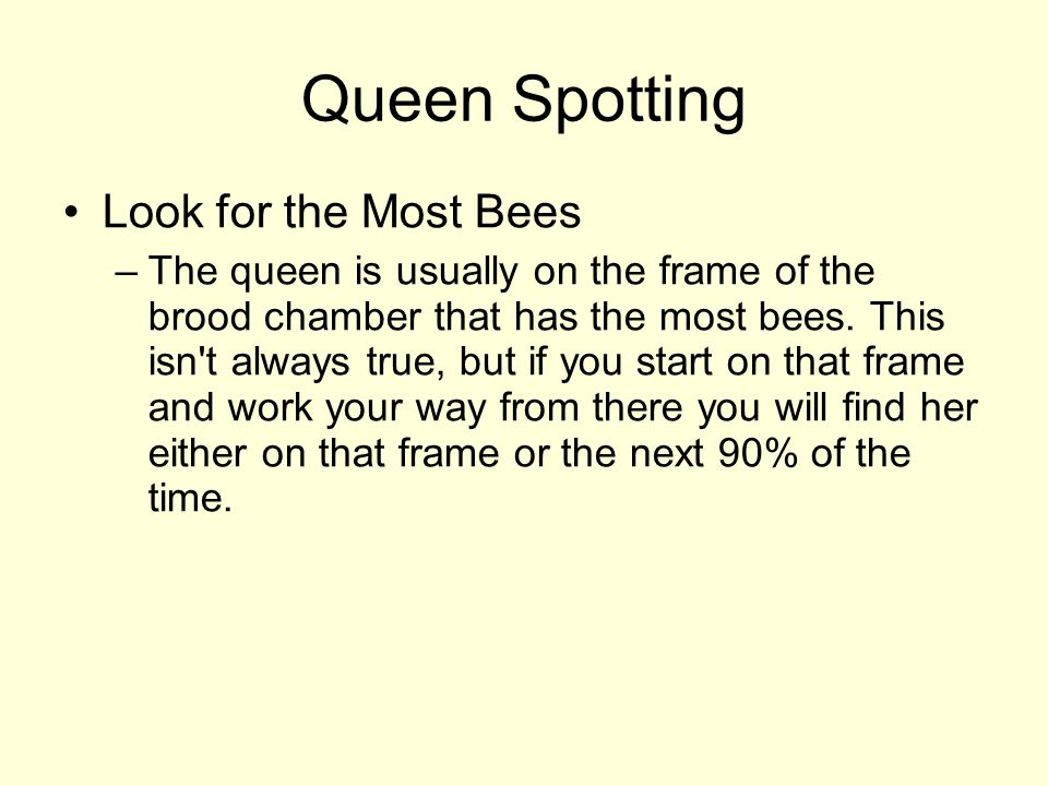 Queen Spotting Look for the Most Bees –The queen is usually on the frame of the brood chamber that has the most bees.