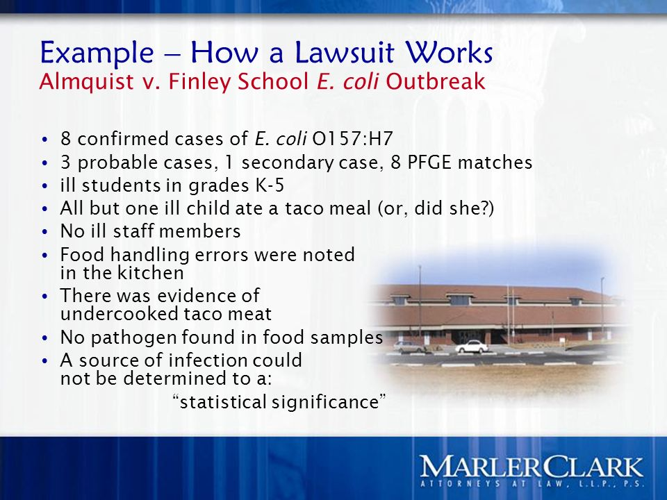 Example – How a Lawsuit Works Almquist v. Finley School E.