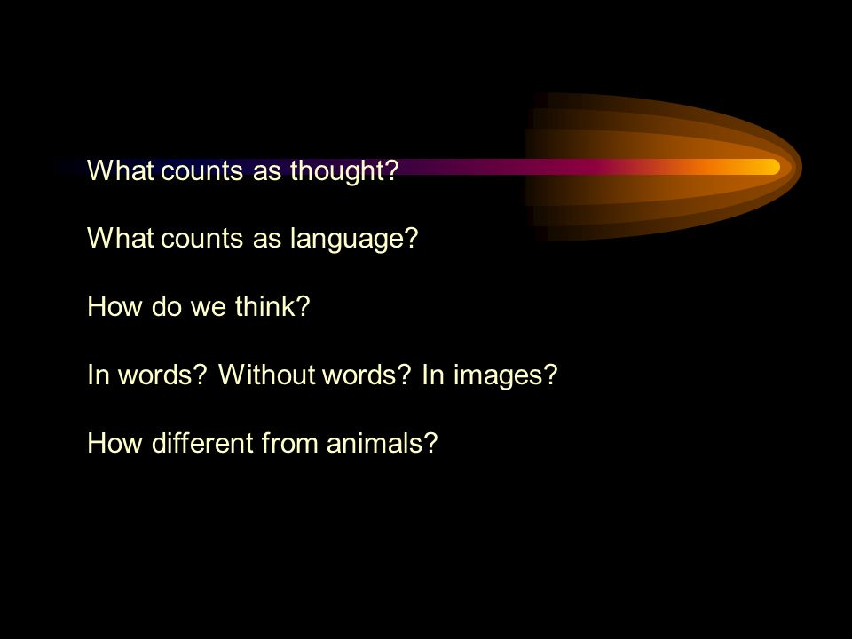 What counts as thought. What counts as language. How do we think.