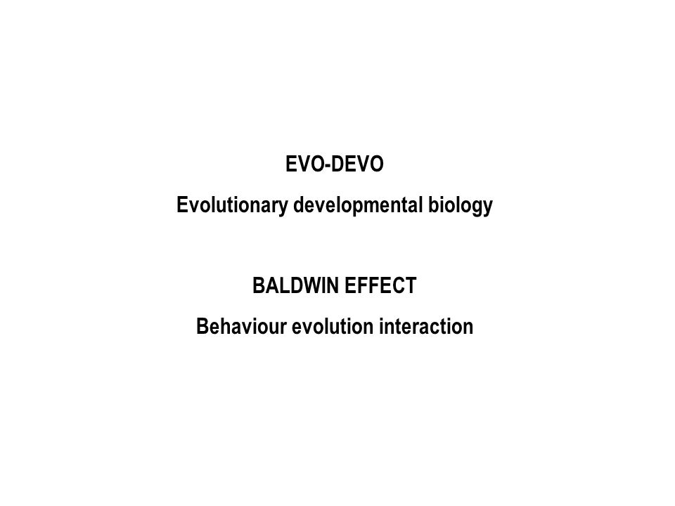 EVO-DEVO Evolutionary developmental biology BALDWIN EFFECT Behaviour evolution interaction