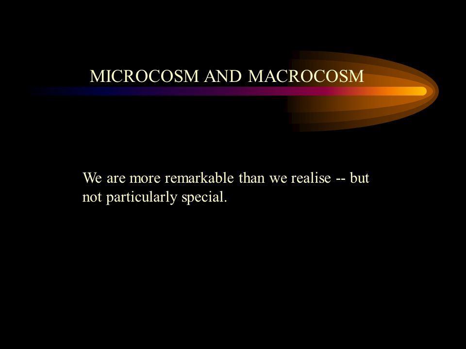 MICROCOSM AND MACROCOSM We are more remarkable than we realise -- but not particularly special.