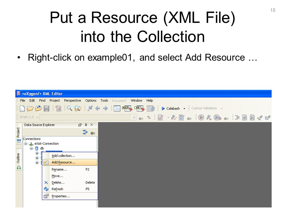 18 Put a Resource (XML File) into the Collection Right-click on example01, and select Add Resource …