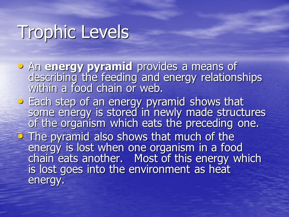 Trophic Levels An energy pyramid provides a means of describing the feeding and energy relationships within a food chain or web.