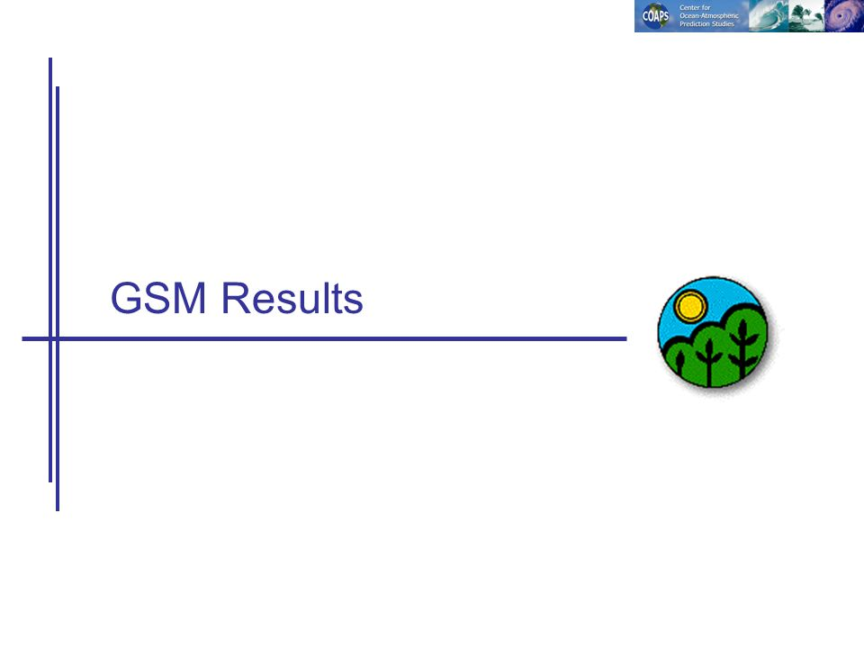 GSM Results