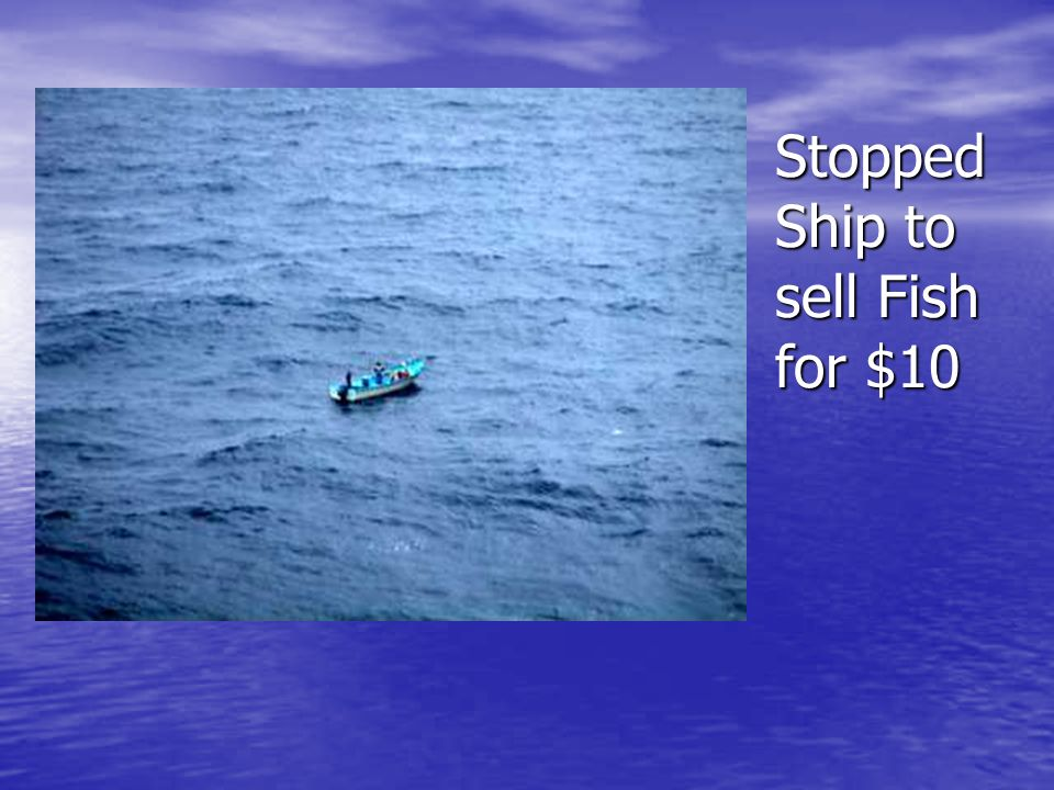 Stopped Ship to sell Fish for $10