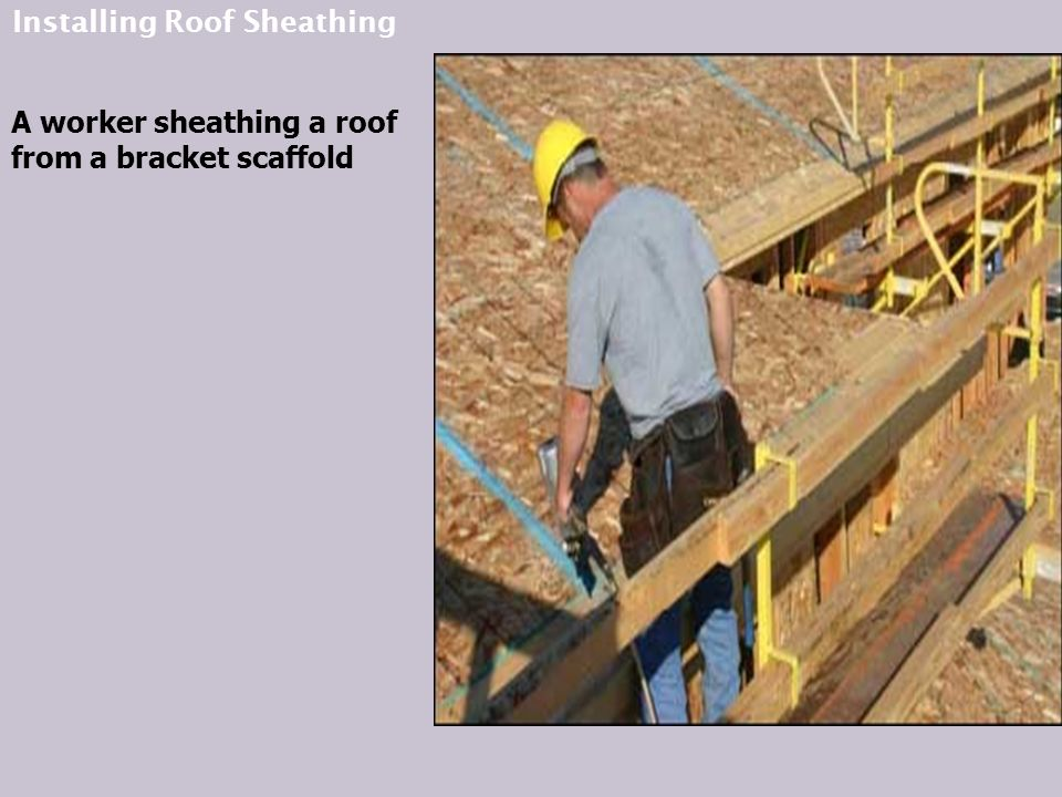 Installing Roof Sheathing A worker sheathing a roof from a bracket scaffold