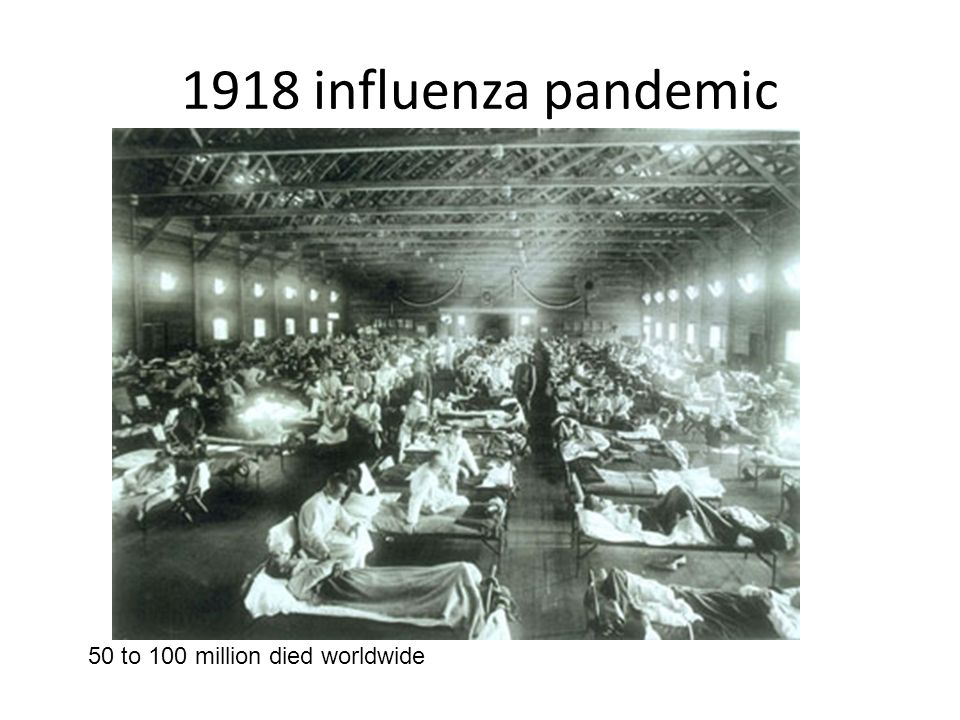 1918 influenza pandemic 50 to 100 million died worldwide