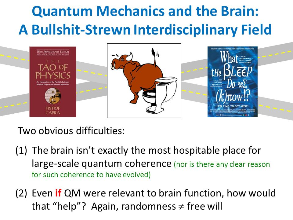 Quantum Mechanics and the Brain: A Bullshit-Strewn Interdisciplinary Field Two obvious difficulties: (1)The brain isnt exactly the most hospitable place for large-scale quantum coherence (nor is there any clear reason for such coherence to have evolved) (2)Even if QM were relevant to brain function, how would that help.