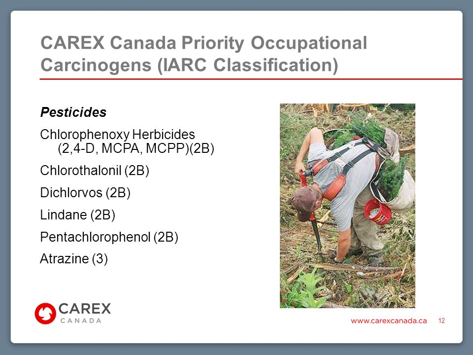 CAREX Canada Priority Occupational Carcinogens (IARC Classification) 12 Pesticides Chlorophenoxy Herbicides (2,4-D, MCPA, MCPP)(2B) Chlorothalonil (2B) Dichlorvos (2B) Lindane (2B) Pentachlorophenol (2B) Atrazine (3)