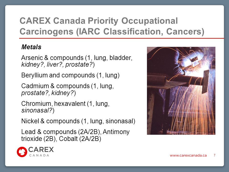 CAREX Canada Priority Occupational Carcinogens (IARC Classification, Cancers) 7 Metals Arsenic & compounds (1, lung, bladder, kidney , liver , prostate ) Beryllium and compounds (1, lung) Cadmium & compounds (1, lung, prostate , kidney ) Chromium, hexavalent (1, lung, sinonasal ) Nickel & compounds (1, lung, sinonasal) Lead & compounds (2A/2B), Antimony trioxide (2B), Cobalt (2A/2B)