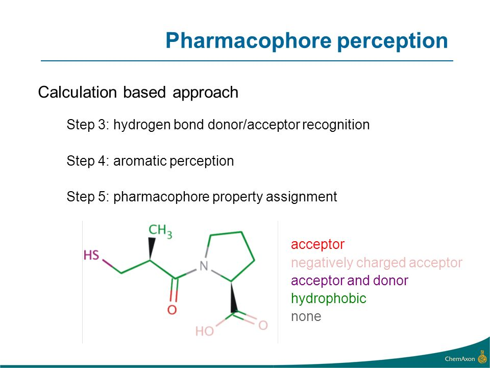 Step 3: hydrogen bond donor/acceptor recognition Step 4: aromatic perception Step 5: pharmacophore property assignment acceptor negatively charged acceptor acceptor and donor hydrophobic none Pharmacophore perception Calculation based approach