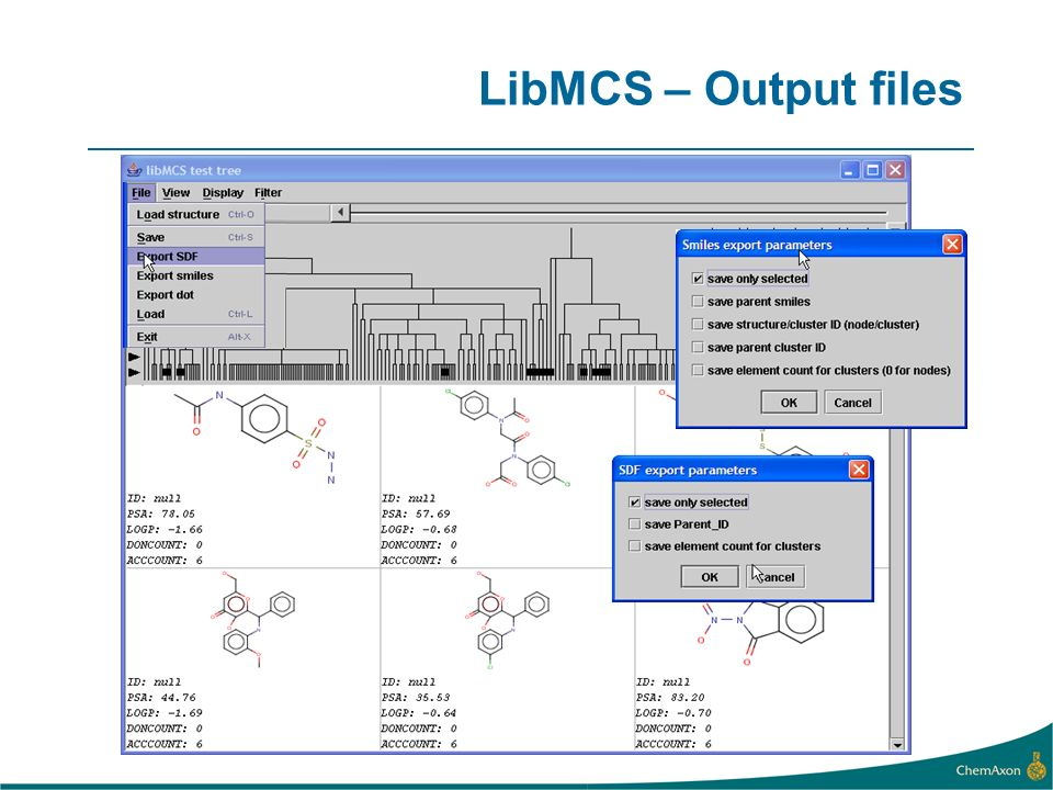 LibMCS – Output files