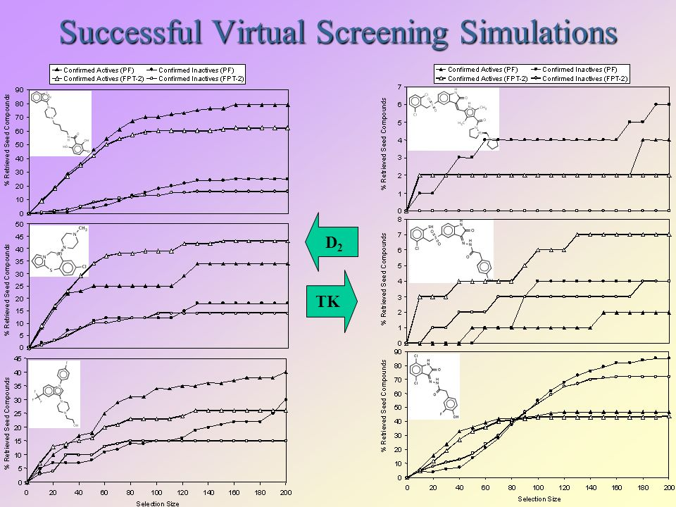 Successful Virtual Screening Simulations D2D2 TK
