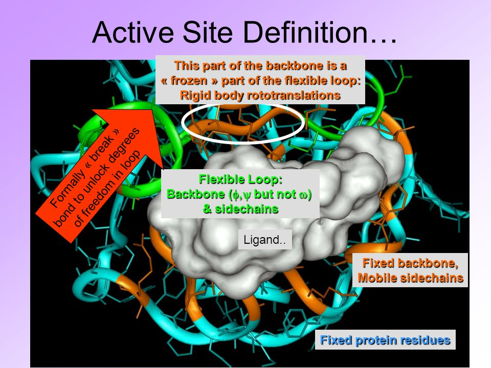 Active Site Definition… Ligand..