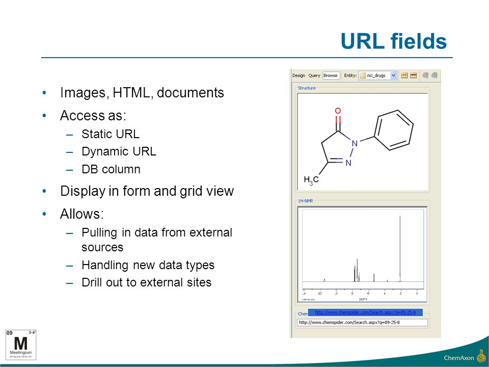URL fields Images, HTML, documents Access as: –Static URL –Dynamic URL –DB column Display in form and grid view Allows: –Pulling in data from external sources –Handling new data types –Drill out to external sites