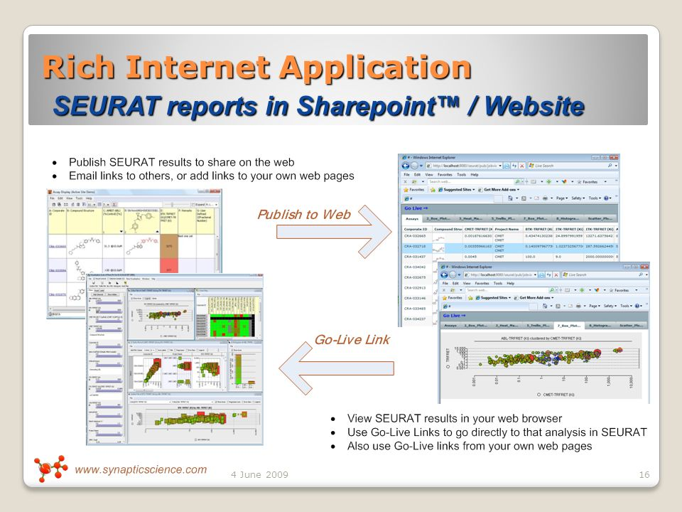 Rich Internet Application SEURAT reports in Sharepoint / Website 164 June 2009