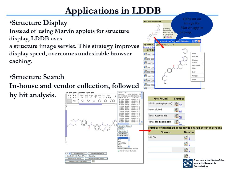 Applications in LDDB Structure Display Instead of using Marvin applets for structure display, LDDB uses a structure image servlet.