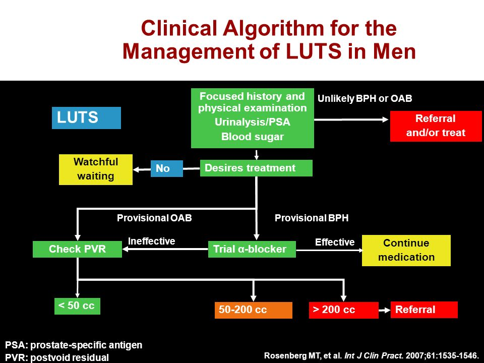 Clinical Algorithm for the Management of LUTS in Men LUTS Focused history and physical examination Urinalysis/PSA Blood sugar Desires treatment Trial α-blocker Continue medication Watchful waiting Effective Ineffective Provisional OABProvisional BPH < 50 cc cc> 200 cc Referral Check PVR No Referral and/or treat Unlikely BPH or OAB Rosenberg MT, et al.