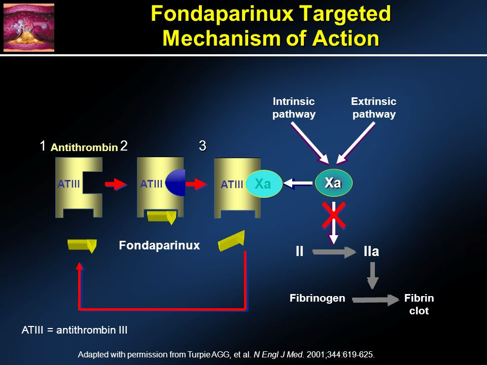 Fondaparinux Targeted Mechanism of Action IIaII Fibrinogen Fibrin clot Extrinsic pathway Intrinsic pathway 3 ATIII Xa 1 ATIII 2 Fondaparinux Xa ATIII = antithrombin III Antithrombin Adapted with permission from Turpie AGG, et al.