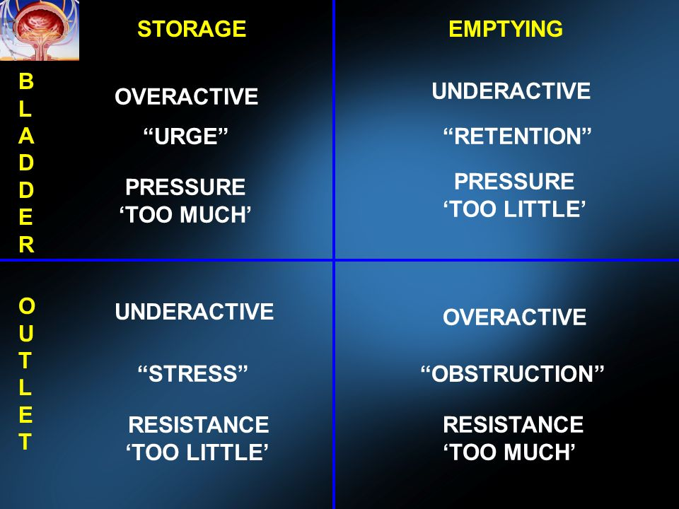 STORAGEEMPTYING BLADDERBLADDER OUTLETOUTLET OVERACTIVE UNDERACTIVE OVERACTIVE URGE RETENTION STRESS OBSTRUCTION PRESSURE TOO MUCH PRESSURE TOO LITTLE RESISTANCE TOO LITTLE RESISTANCE TOO MUCH