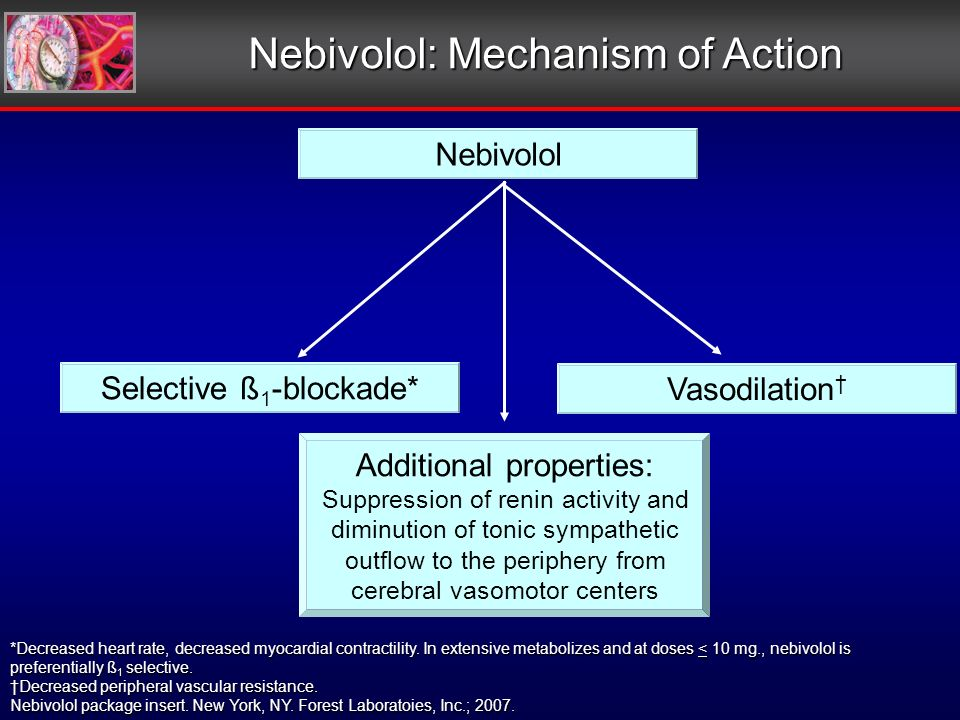 Nebivolol: Mechanism of Action Nebivolol Selective ß 1 -blockade* Vasodilation Additional properties: Suppression of renin activity and diminution of tonic sympathetic outflow to the periphery from cerebral vasomotor centers *Decreased heart rate, decreased myocardial contractility.