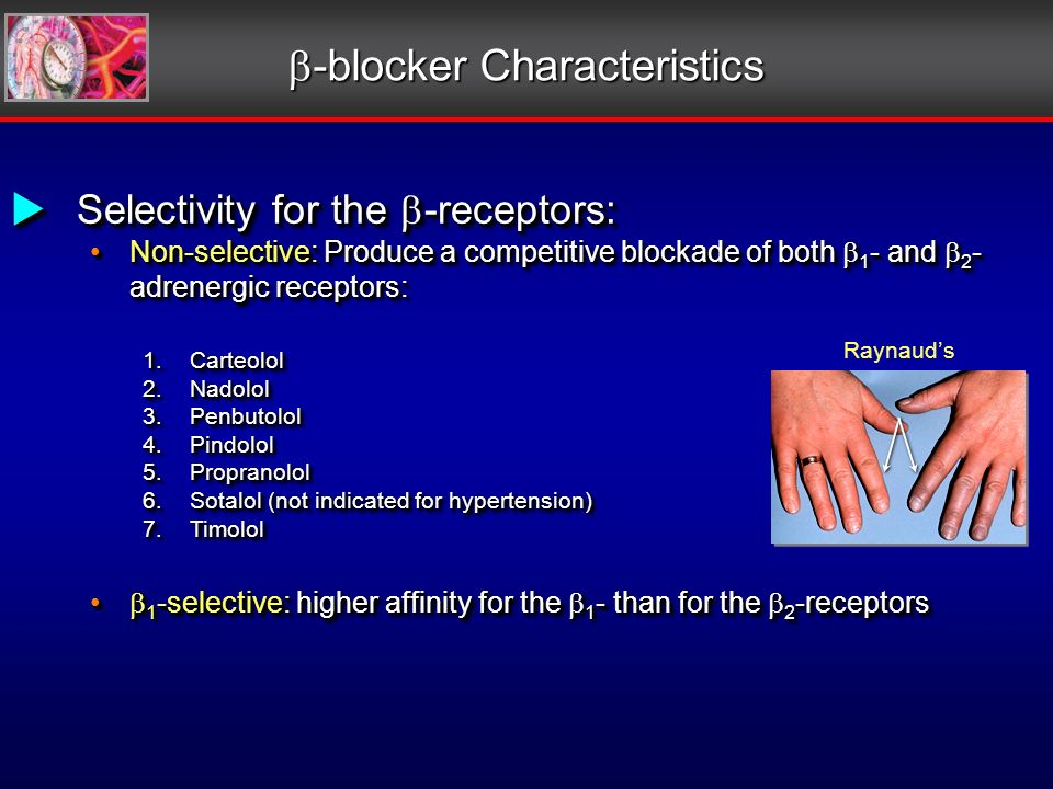 Selectivity for the -receptors: Selectivity for the -receptors: Non-selective: Produce a competitive blockade of both 1 - and 2 - adrenergic receptors: Non-selective: Produce a competitive blockade of both 1 - and 2 - adrenergic receptors: 1.Carteolol 2.Nadolol 3.Penbutolol 4.Pindolol 5.Propranolol 6.Sotalol (not indicated for hypertension) 7.Timolol 1 -selective: higher affinity for the 1 - than for the 2 -receptors 1 -selective: higher affinity for the 1 - than for the 2 -receptors Selectivity for the -receptors: Selectivity for the -receptors: Non-selective: Produce a competitive blockade of both 1 - and 2 - adrenergic receptors: Non-selective: Produce a competitive blockade of both 1 - and 2 - adrenergic receptors: 1.Carteolol 2.Nadolol 3.Penbutolol 4.Pindolol 5.Propranolol 6.Sotalol (not indicated for hypertension) 7.Timolol 1 -selective: higher affinity for the 1 - than for the 2 -receptors 1 -selective: higher affinity for the 1 - than for the 2 -receptors -blocker Characteristics -blocker Characteristics Raynauds