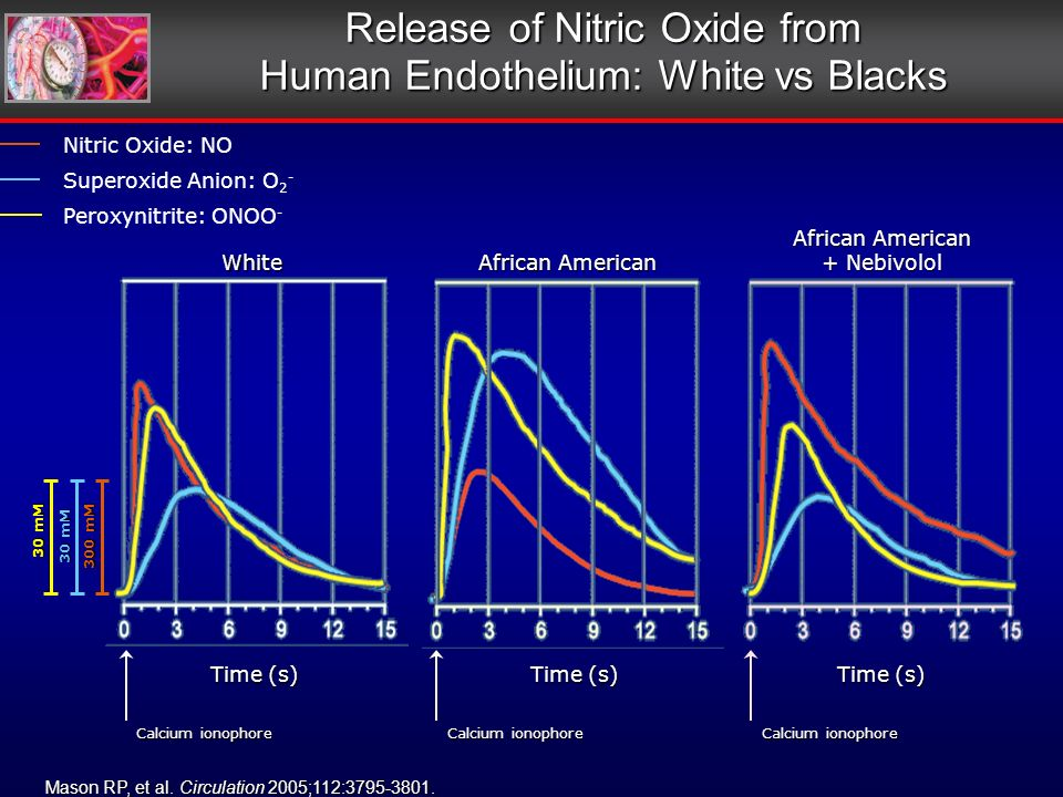 Time (s) Calcium ionophore White African American + Nebivolol 300 mM 30 mM Release of Nitric Oxide from Human Endothelium: White vs Blacks Mason RP, et al.
