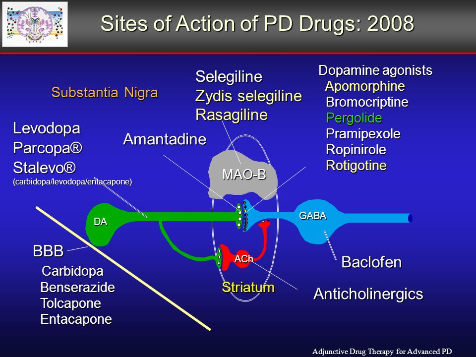 DA GABA ACh Striatum Substantia Nigra Levodopa Amantadine Selegiline Zydis selegiline Rasagiline Dopamine agonists Apomorphine Apomorphine Bromocriptine Bromocriptine Pergolide Pergolide Pramipexole Pramipexole Ropinirole Ropinirole Rotigotine Rotigotine Baclofen Anticholinergics BBB Carbidopa Carbidopa Benserazide Benserazide Tolcapone Tolcapone Entacapone Entacapone MAO-B Stalevo®(carbidopa/levodopa/entacapone) Parcopa® Sites of Action of PD Drugs: 2008 Adjunctive Drug Therapy for Advanced PD